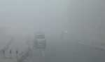 Very dense fog, severe cold waves predicted for northern parts of India